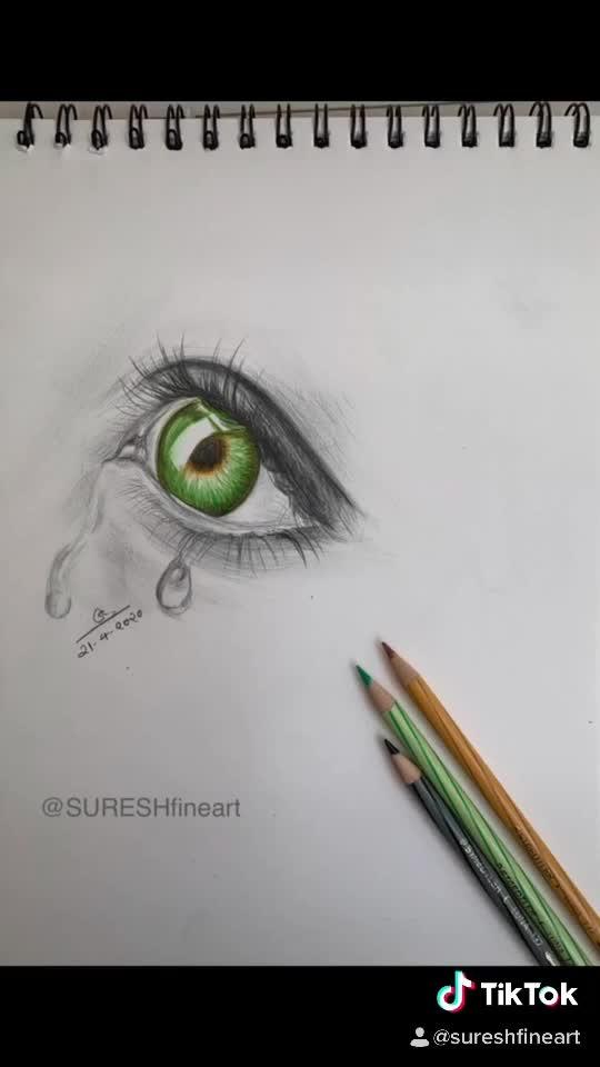 My artwork  #pencils #pencilcolours #artwork #black_white #sketchbooks #sureshfineart #birds_sketch #elenagilbert #sketching #sketchartist