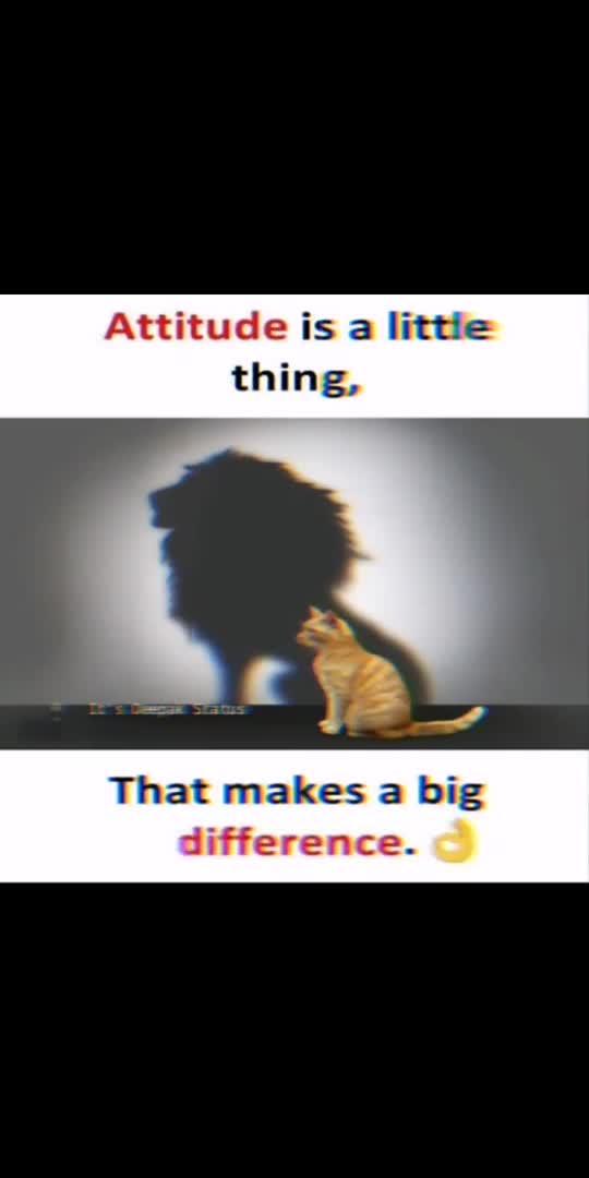 Attitude tells you