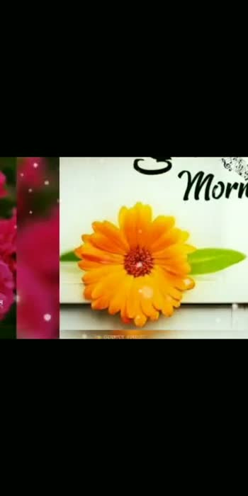 #goodmorning #goodmorning ########