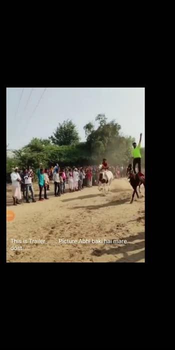 #horselover #horseriding #horselover
