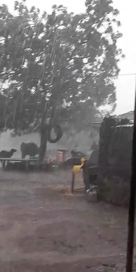 #rain #barishmausam #tagsforlikes #tagforfollow #roposostar #roposo