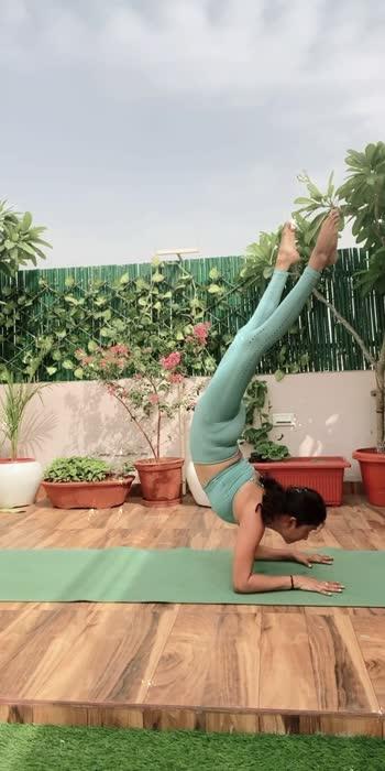 #yogapractice #trending #trendingonroposo #yogaforlife #yogaforall #yogaeverydamnday #yogachallenge #yogainspirations #yogapants #yoga4roposo #yoga4growth #yoga4all