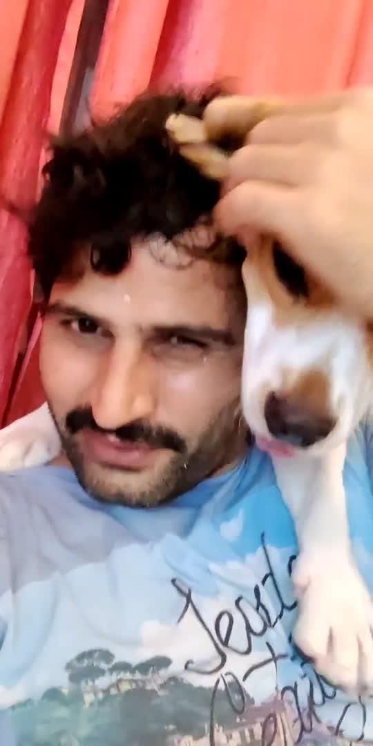 when we  meet after 10 days ❤️ #hislove #happniess #myboy #beagle #beaglelove