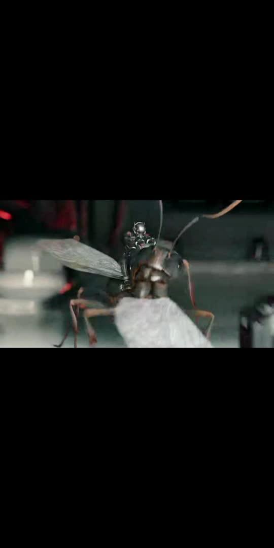 AVENGER''S NEW  ANT MAN VIDEO