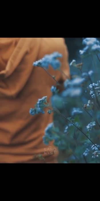 #nature #naturephotography #naturelovers #naturelover #natureza #nature_perfection #mothernature #naturegram #nature_brilliance #instanature #naturephoto #natureaddict #naturelove #nature_shooters #natureshots #natureporn #nature_lovers #lovenature #nature_seekers #naturehippys #nature_good #naturel #natureonly #nature_sultans #naturewalk #naturebeauty #naturephotographer #nature_wizards #natureart #natureshot