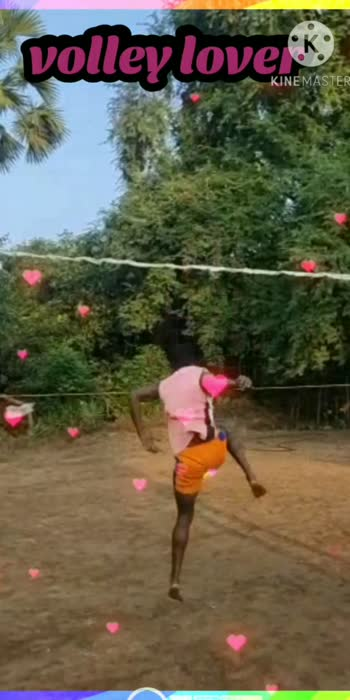 volley lover