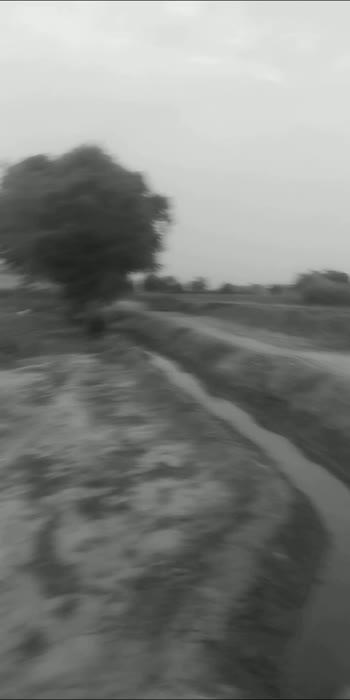 #sidhumoosewala #karanaujla #time #funnyvideo #babbumaaninsta #tractorlovers #sidhumoosewala #sidhumoosewala #sidhumoosewala #sidhumoosewala #sidhumoosewala #sidhumoosewala