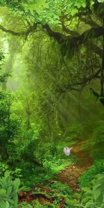 nature #nature#nature #naturelover