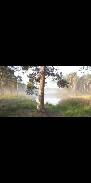 #roposo #relaxing #relaxingvideo #relaxingmusic #relaxingsound #meditation
