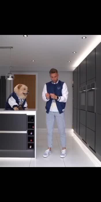 #trendingvideo #trend #doglove #clothingstore #clothingbrand