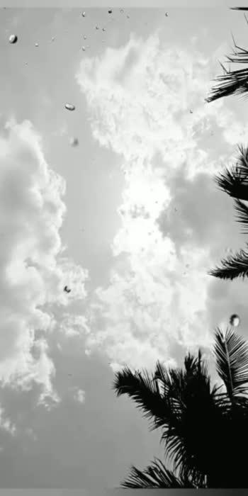 #bestof-rain season
