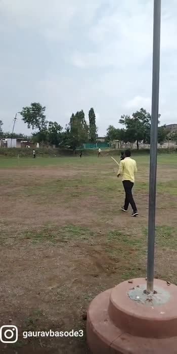 cricket #cricket
