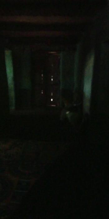 Hollywood horror horror scene