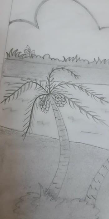 my sketch, Natural sketch drawing #sketch