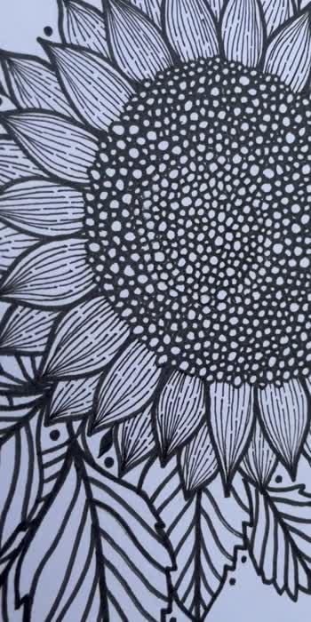 Sunflower 🌻  #artistonroposo #sunflower #lineart