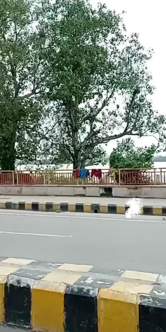 tu dhadkan...mai dil...#prayagraj #yamuna bridge